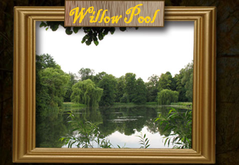 Willow Pool